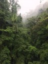 Cloud and Rainforests  of Costa Rica.jpg